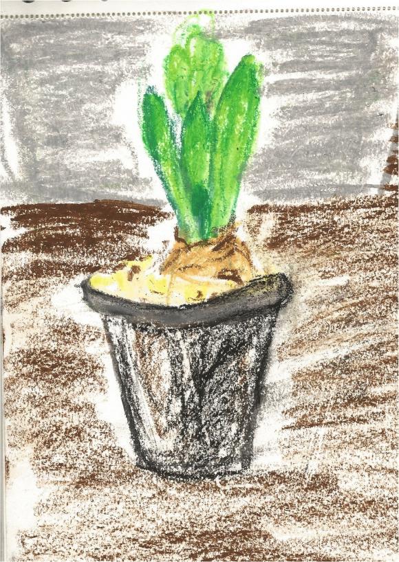 http://cyt.cowblog.fr/images/plante/plante2.jpg